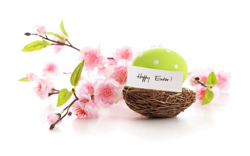 happy-easter-hd-wallpapers-800x500
